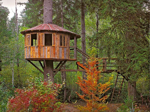 treehouse littleclickers. Black Bedroom Furniture Sets. Home Design Ideas